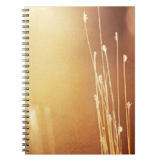 Caderno de cor castanha da foto