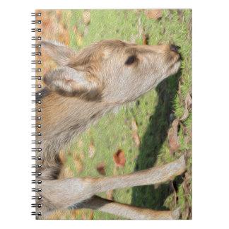 Caderno de Doreen
