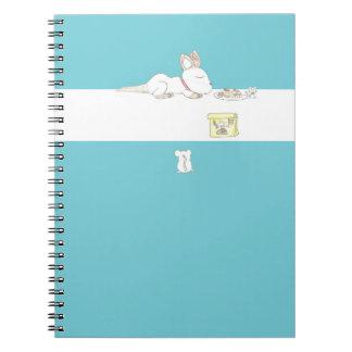 Caderno do Catnap