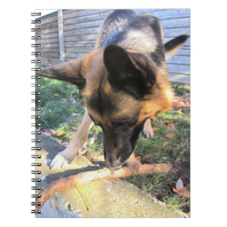 Caderno do german shepherd