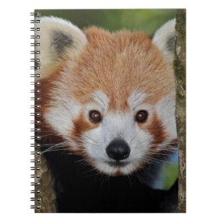 Caderno do retrato da panda