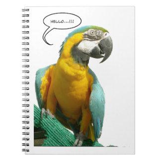 Caderno engraçado do papagaio de fala