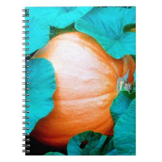 Caderno Espiral A abóbora grande