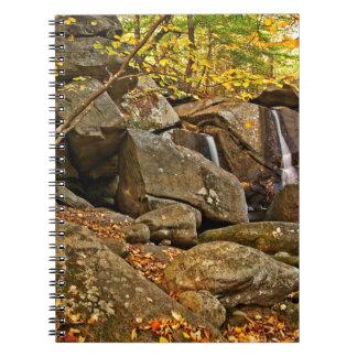 Caderno Espiral A armadilha cai no outono