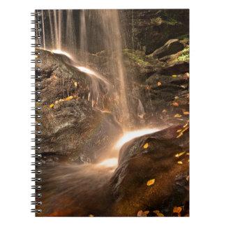 Caderno Espiral A base da armadilha cai no outono