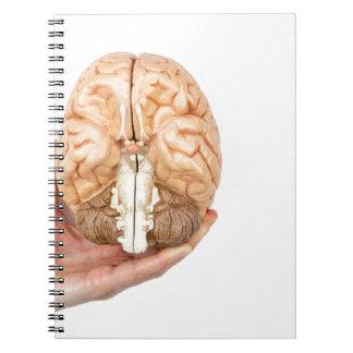 Caderno Espiral A mão guardara o cérebro humano modelo no fundo