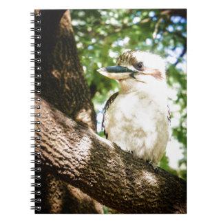 Caderno Espiral Austrália bonito Kookaburra