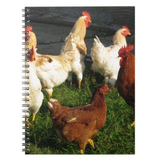 Caderno Espiral Aves domésticas