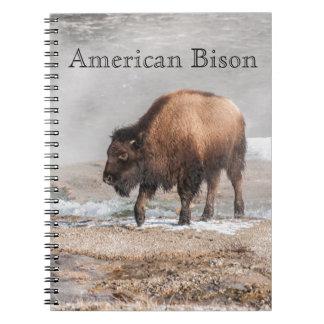 Caderno Espiral Bisonte ou búfalo novo considerável