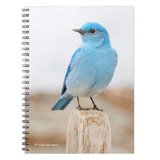 Caderno Espiral Bluebird bonito da montanha na praia