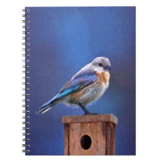 Caderno Espiral Bluebird (fêmea)