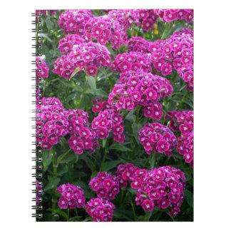 Caderno Espiral Bonito no rosa