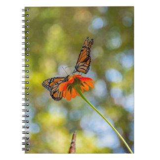 Caderno Espiral Borboletas de monarca em Wildflowers
