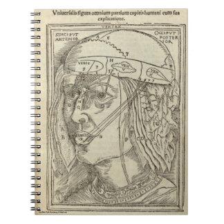 Caderno Espiral Cabeça humana