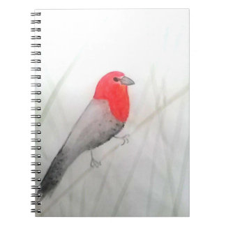 Caderno Espiral Caderno/ Notebook Passarinho