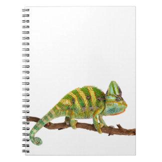 Caderno Espiral Camaleão