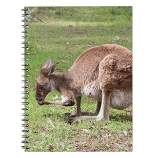 Caderno Espiral Canguru, interior Austrália