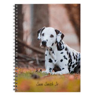 Caderno Espiral Cão Dalmatian personalizado