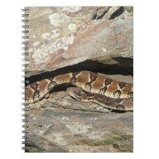 Caderno Espiral Cascavel no parque nacional de Shenandoah