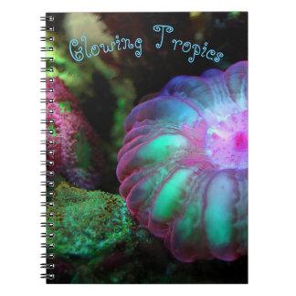 Caderno Espiral Coral submarino de incandescência