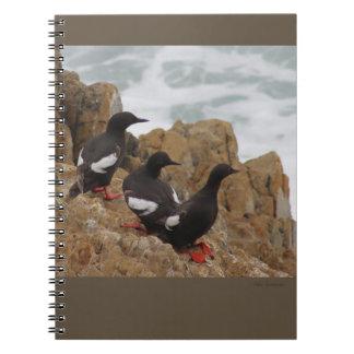 Caderno espiral de Guillemots de pombo