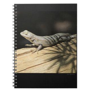 Caderno espiral de lagarto de cerca ocidental
