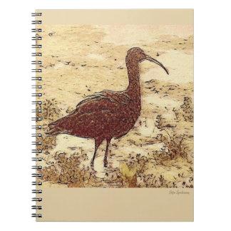 Caderno espiral dos íbis do pântano
