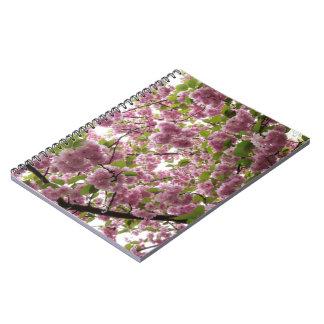 Caderno Espiral Dossel II da flor de cerejeira