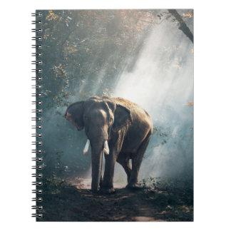 Caderno Espiral Elefante asiático em um esclarecimento Sunlit da