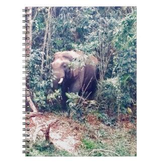 Caderno Espiral Elefante em Tailândia