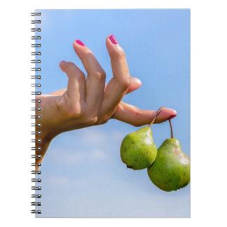 Caderno Espiral Entregue guardarar duas peras verdes de suspensão