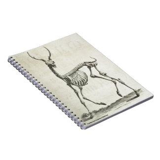 Caderno Espiral Esqueleto do fanfarrão