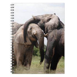 Caderno Espiral Família do elefante de África