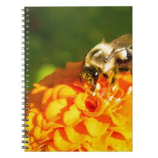 Caderno Espiral Flor do amarelo alaranjado da abelha do mel com