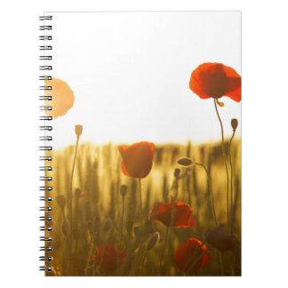 Caderno Espiral Flor vermelha perto da flor branca durante o dia