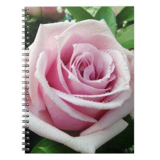 Caderno espiral floral do rosa do rosa