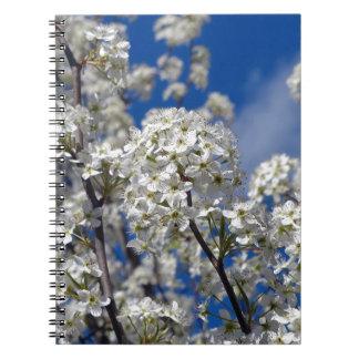 Caderno Espiral Flores da pera de Bradford