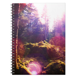 Caderno Espiral Floresta do paraíso