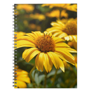 Caderno Espiral flowers-2824808