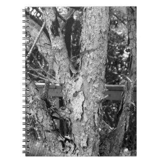 Caderno Espiral Foto preto e branco da natureza da árvore