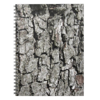 Caderno Espiral Fundo da textura do latido de árvore da pera