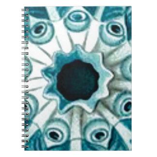 Caderno Espiral furo e olhos azuis