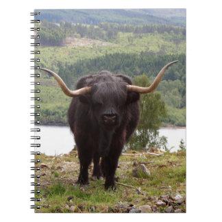 Caderno Espiral Gado preto das montanhas, Scotland