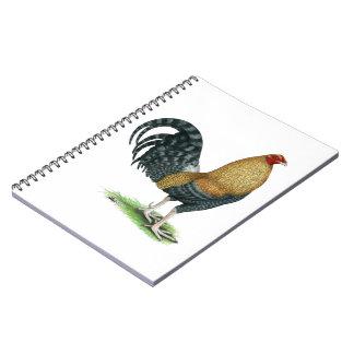 Caderno Espiral Gamecock:  Os DOM ou Crele