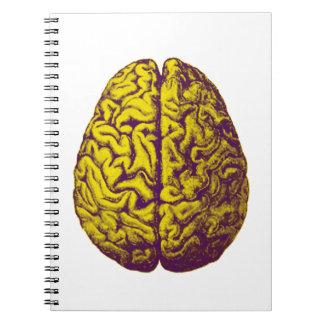 Caderno Espiral Gelo do cérebro