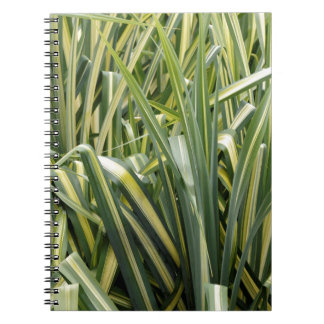 Caderno Espiral Grama Variegated do carriço
