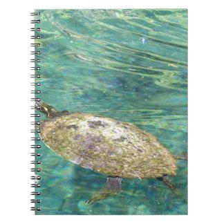 Caderno Espiral grande natação da tartaruga do rio