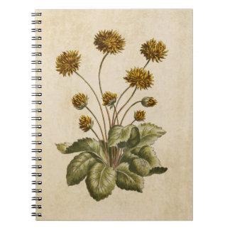 Caderno Espiral Ilustração floral botânica da aranha do vintage