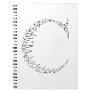 Caderno Espiral Inicial do osso da letra C