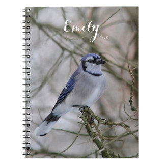 Caderno Espiral Jay azul